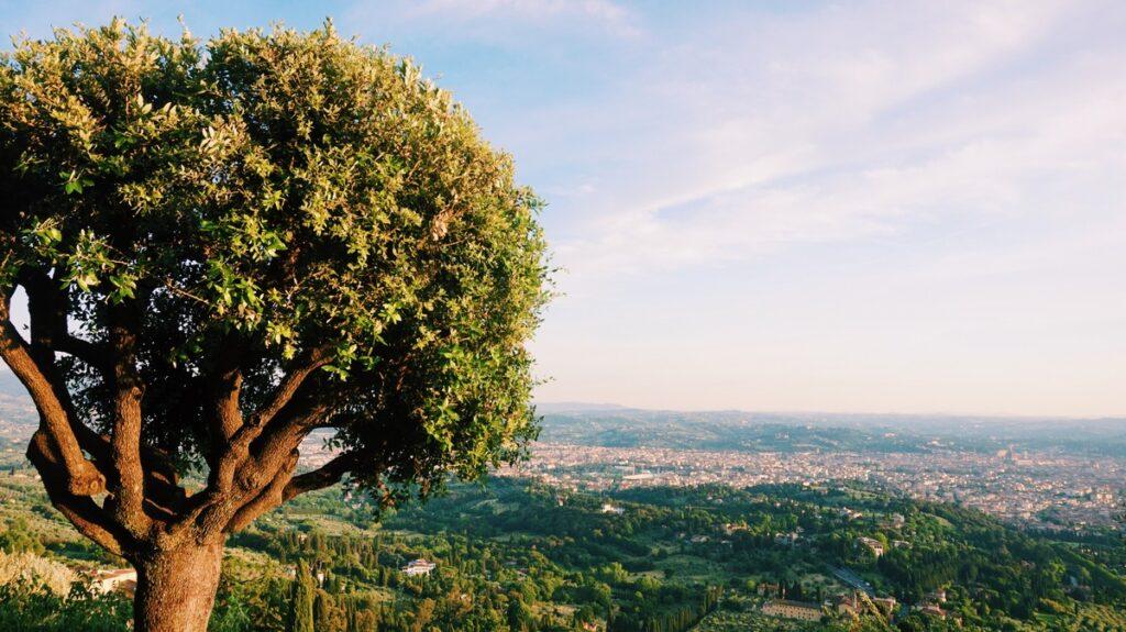 Piękny widok na Florencję ze wzgórze w Fiesole