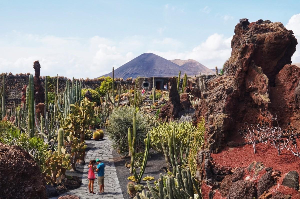 Jardin de Cactus na Lanzarote - Ogród z kaktusami